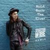 James Bay - Hold Back The River (Sebastian Wibe Remix) [Free Download]