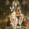 2016 - 3-9 - SPP - Gokul - Jagmohan - Venu - Gokul - Siva - Ratri - AM.MP3