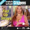 #275: Fed Up Strays