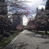 Ocean Eyes Astronomyy Edit Remix Mp3