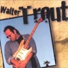 Walter Trout - Marie's Mood (Cover)