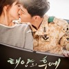 Always By Yoon Mi Rae Cover (Descendants of the Sun OST)
