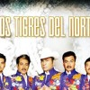 Los Tigres Del Norte Mix 2- La Puerta Negra, La Mesa del Rincon, Carta Abierta, etc.