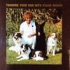 It s Magic : Training Your Dog  download pdf