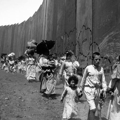 Nakba 68: pasado, presente y futuro de la catástrofe palestina