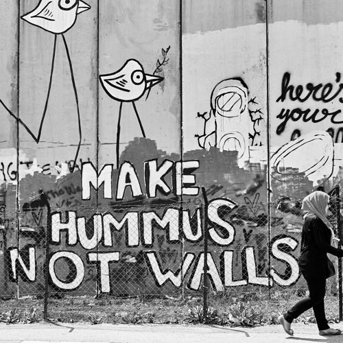 Activismo juvenil en la sociedad civil árabe