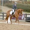 High Heels And Horses