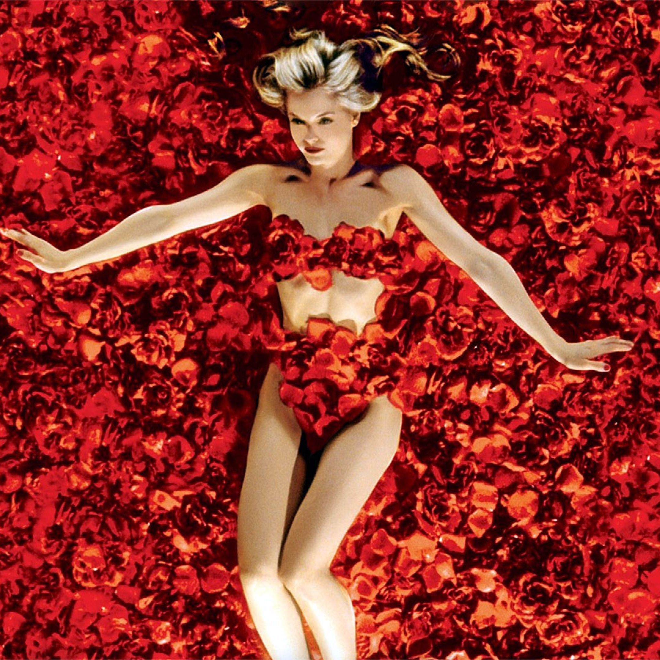 american beauty essay American beauty an essay of symbolism summary (creative writing inspiration images) april 9, 2018 by he wrote an essay about what he went threw when my dad had.