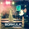 Borkula Swali Ambalika Kashyab New Assamese Song The Lifeless Hurricane Mp3