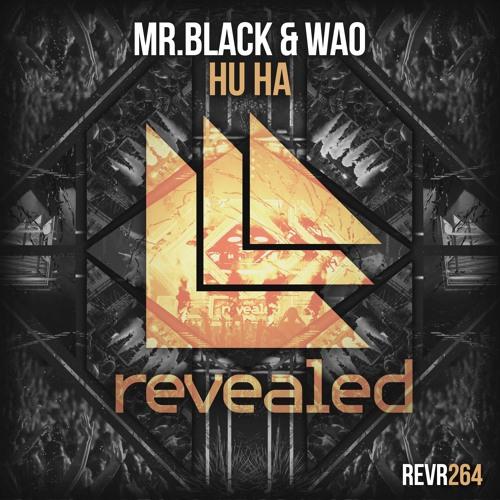 Mr Black WAO - Hu Ha (DYMEJSZYN Poing Edit)