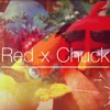 Angry Birds - Red X Chuck (Shower)