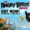 THE ANGRY BIRDS MOVIE -- KGO DVD Review (8-16-16)