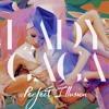 Lady Gaga - Perfect Illusion ( Remix )