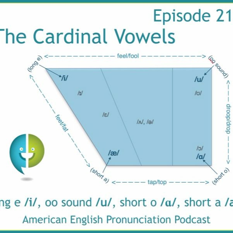 216: The Cardinal Vowels--long e /i/, oo sound /u/, short o /ɑ/, and short a /æ/