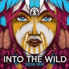 Mystical Complex - Into The Wild 2016 Mix