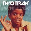 Michael Jackson ( Jackson 5 ) - I want u back ( Twotrak Summer Remix )