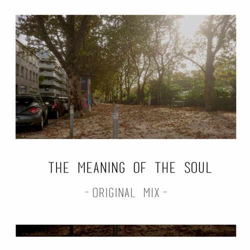 the meaning of the soul Ageless soul: the lifelong journey toward meaning and joy [thomas moore] on amazoncom free shipping on qualifying offers beautifully and eloquently writtenthomas moore convinces us that we age best when we embrace our age.