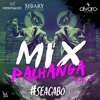Mix Pachanga 2 SeAcabo Descarga Free DjAlvaroBoza