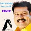 Kannimanga Prayathill - Kalabhavan Mani - (ReMiX) - DJ Aromal - MiX