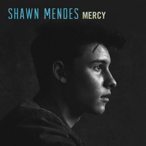 Download Shawn Mendes - Mercy (JTL Flip)*BUY=FREEDL* by JACK THE LAD Mp3 Download MP3