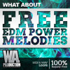FREE EDM Power Melodies [24 Unique KSHMR / R3hab / Headhunterz Style Melody Packs]
