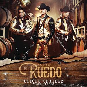Ulices Chaidez y Sus Plebes-Por Qué Fui Un Idiota (2016) להורדה