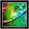 John Legend - Love Me Now (SEMLR Remix)