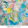 Zara Larsson - I Would Like (MAGNÜS Remix) [Free Download]