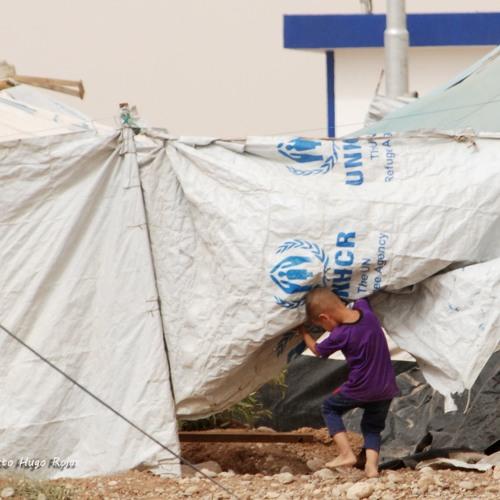 Humanitarian crisis in the region of Iraqi Kurdistan