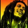 Bob Marley - Jamming (cover)