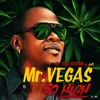 Mr Vegas Ft Walshy Fire So High El Tolo Riddim By Lizi Mp3