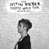 Purpose Tour Songs (Full Album)