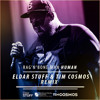 Rag N Bone Man Human Eldar Stuff Tim Cosmos Remix Mp3