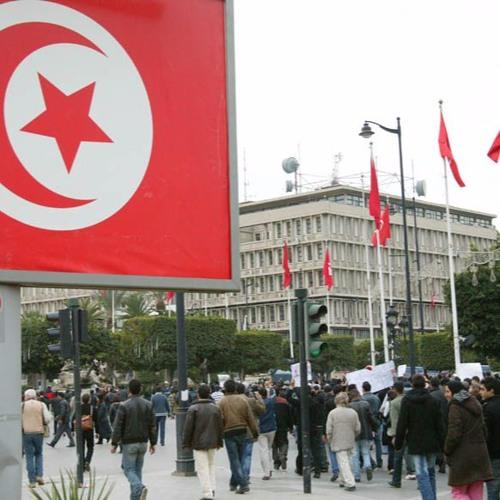 Transición democrática y reforma judicial en Túnez