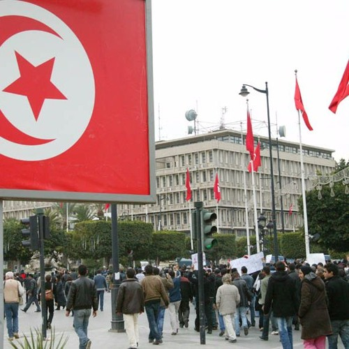 Democratic transition and judicial reform in Tunisia (ARABIC)