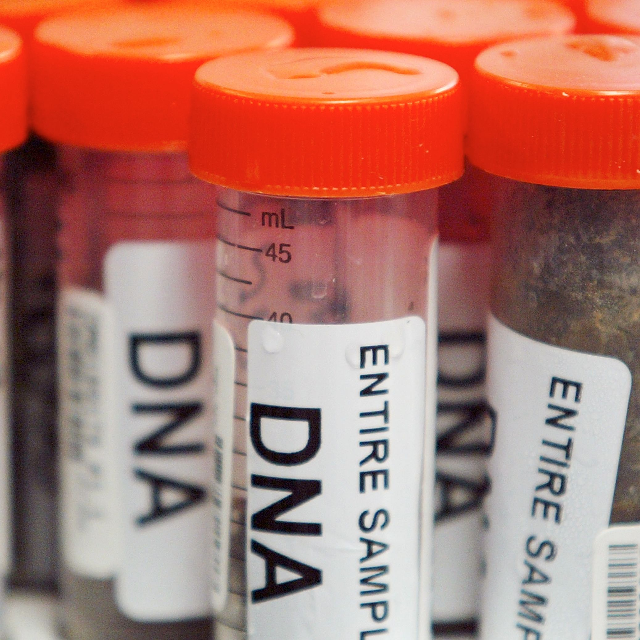 DNA: Balancing privacy and public safety