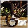 Frank Ocean - Biking