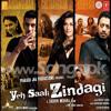 Yeh Saali Zindagi (Duet) - www.Songs.PK