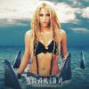 Shakira - Whenever Wherever (Lee Keenan Bootleg) Free Download!!!