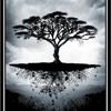 Rain And Thunder - Fever Tree Rising