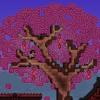 Tree Bark (prod. Bounceaholic)