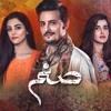 Sanam Drama OST Full Complete Song Shuja Haider 2016
