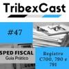 SPED FISCAL- Dicas do Guia Prático - #47 - Registro C700, 790 e 791