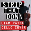 Free Download Strip That Down - Liam Payne feat. Quavo David Skinner Cello Cover Mp3