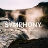 Clean Bandit - Symphony feat. Zara Larsson [Cover]