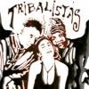 tribalistas   ja sei namorar pietro paulo m  bootleg remix