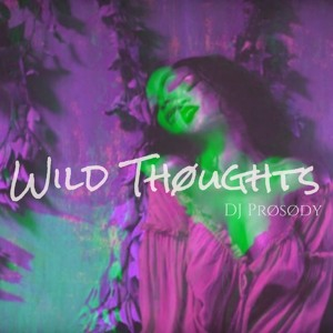 Wild Thoughts Mix להורדה