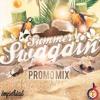 Summer Swaggin Promo Mix 2017 - DJ Timmy