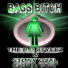 THE_B.D_STYLEZ_&_STONY_GJAL_-_BASS_BITCH_[promix]