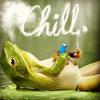 Balva Wild - Chill